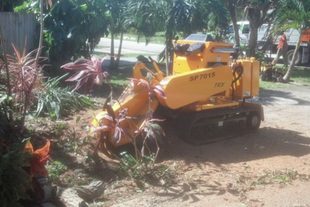 Stump Grinding Photos